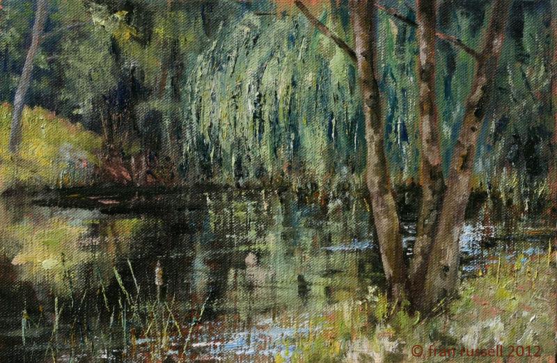 Dingleden Farm Pond & Willow