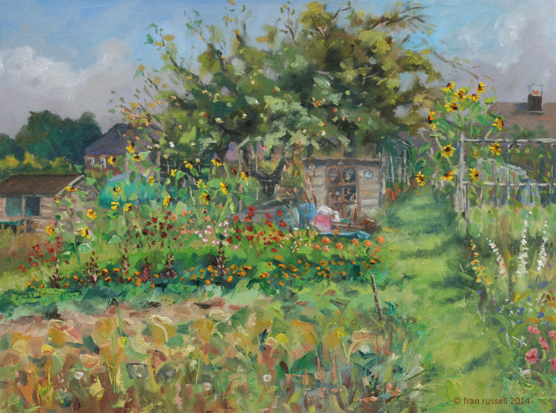 The allotment, Hawkhurst