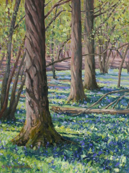 The bluebell woods, Rolvenden