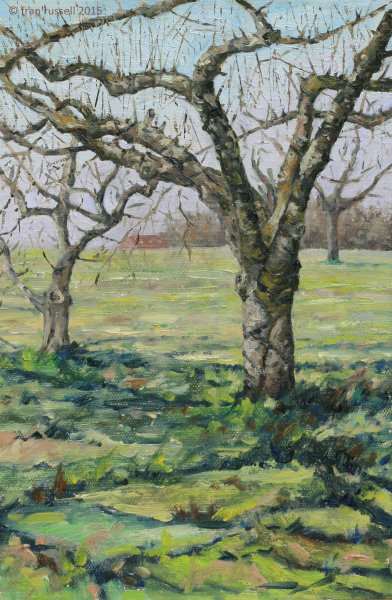 The Old Apple Orchard - early April