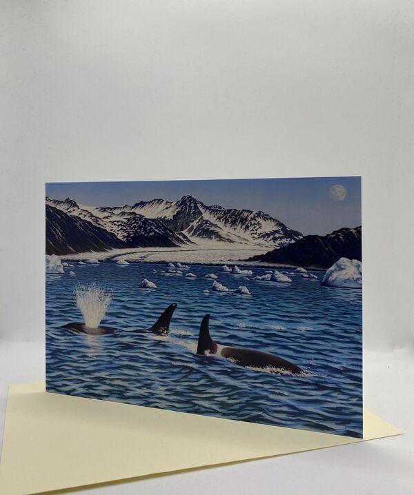 NEW CARD! 'Sea Change'