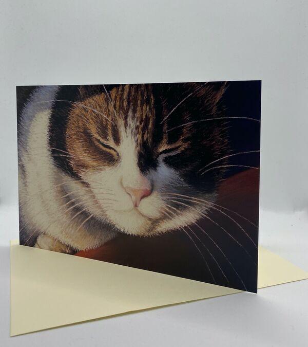 NEW CARD! 'Catnap'