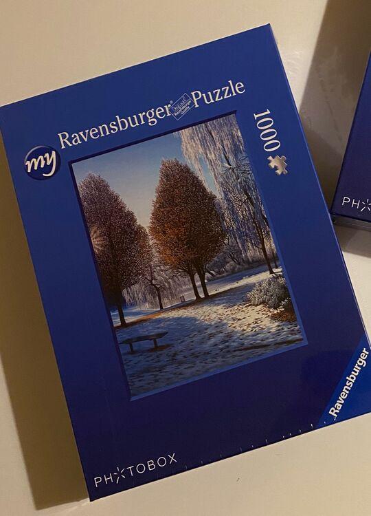 'Winter Sun (Hanley Park series)' jigsaw puzzle