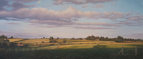 'Meadow'