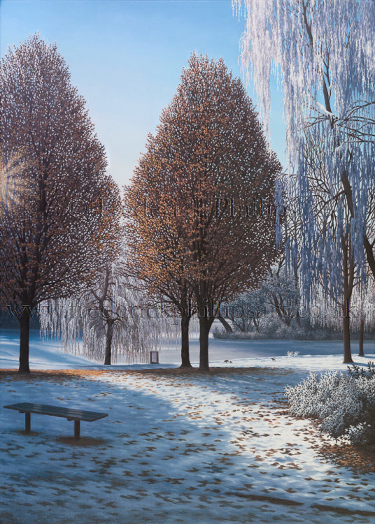CARD: 'Winter Sun (Hanley Park series)'
