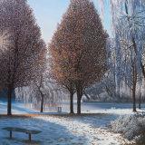 CARD: 'Winter Sun (Hanley Park series)'
