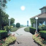 CARD: 'Inner Landscape'