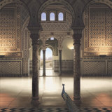 NEW! CARD: 'Alcazar Palace'
