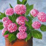 Ann's Hydrangeas