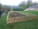 Cramond Primary Wildflower Project