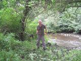 John Crutchfield removing Himalayan Honeysuckle