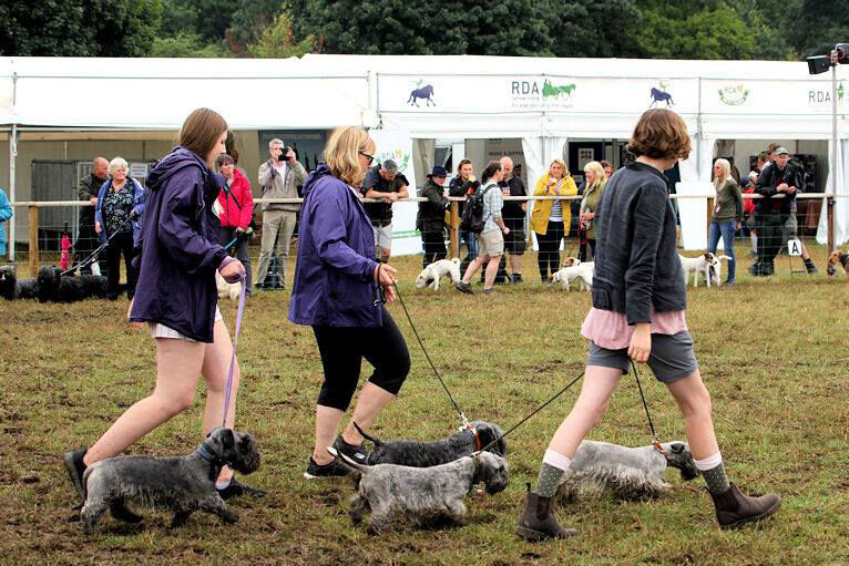 Breed Parade, 2019 - in the mud!