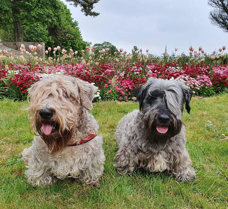 Boris and Maggie