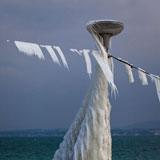 ice ice lady