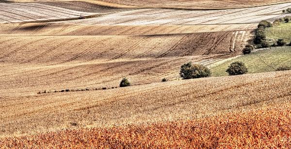 An Unfolding Landscape