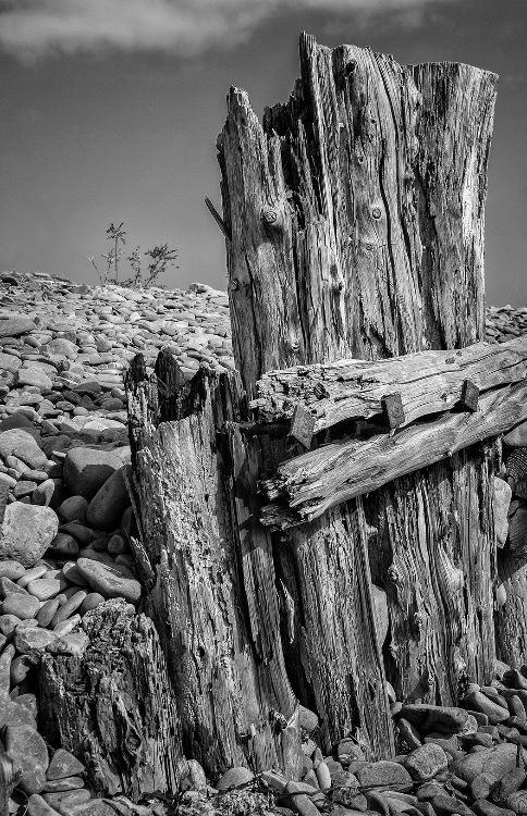 Weathered by Storms