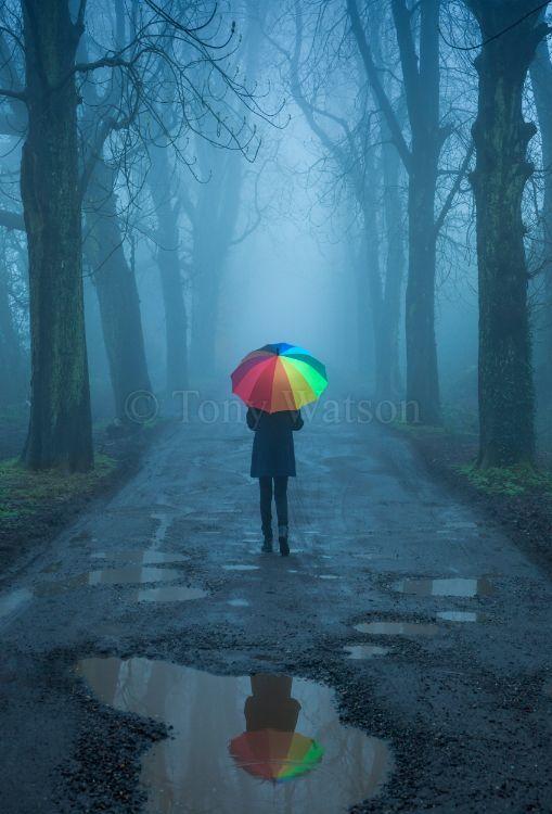 1804023 umbrella