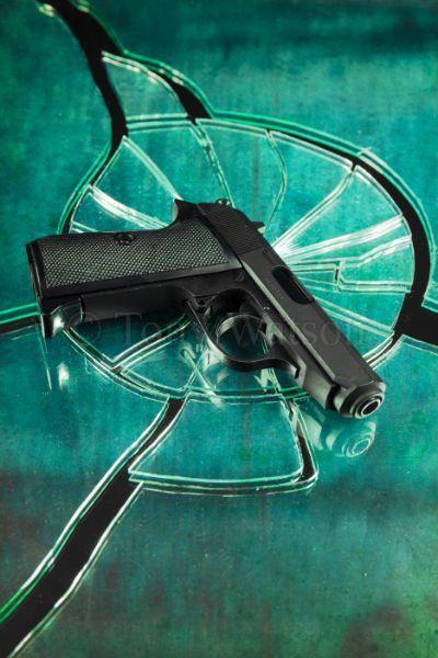 1902012 gun