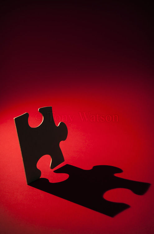 1910006 puzzle
