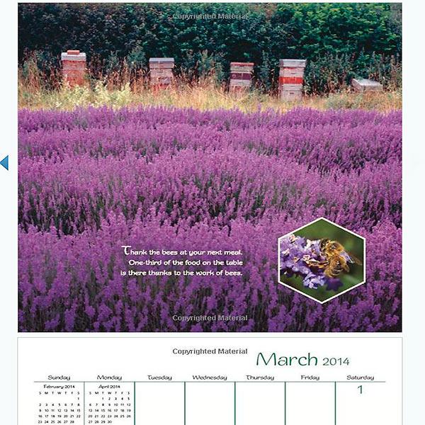 Bee-happy-calendar