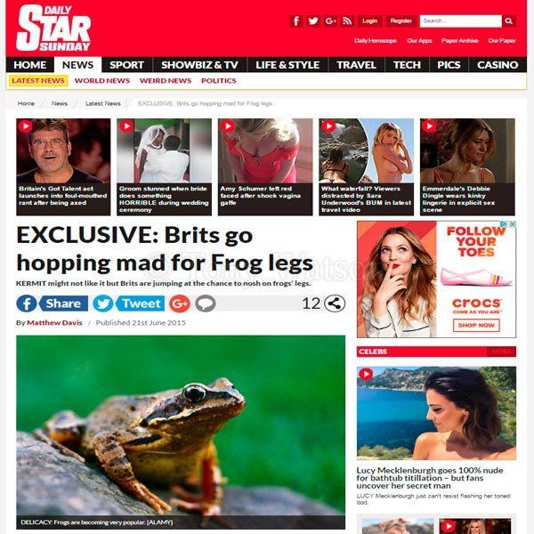 Daily-Star-Sunday