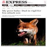 Express-Newspaper