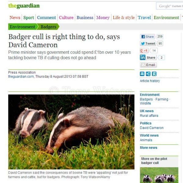 The-Guardian-Newspaper-3