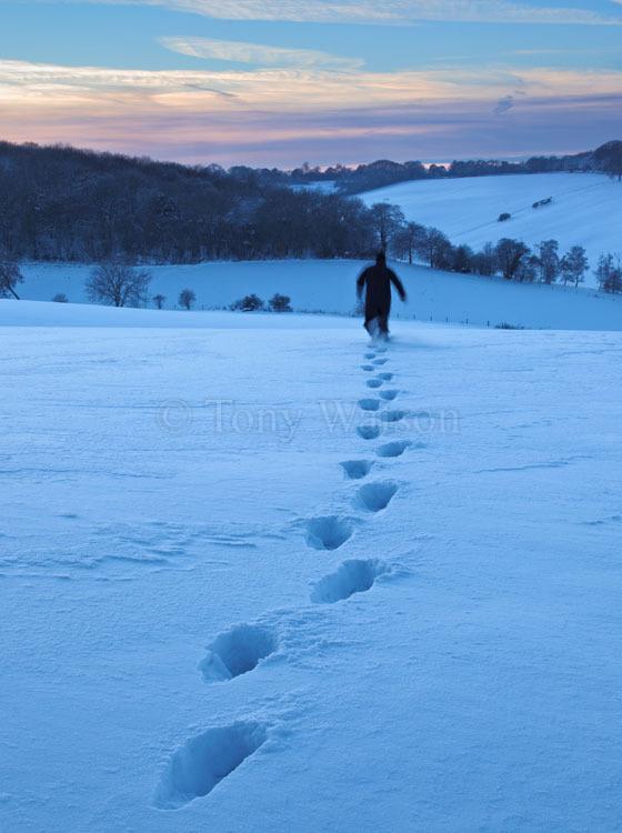 Snowy escape