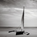Resting Dhow