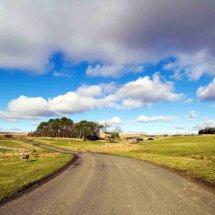 Otterburn Landscape
