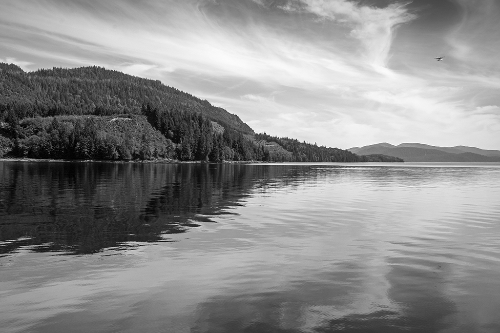 George Inlet Reflections
