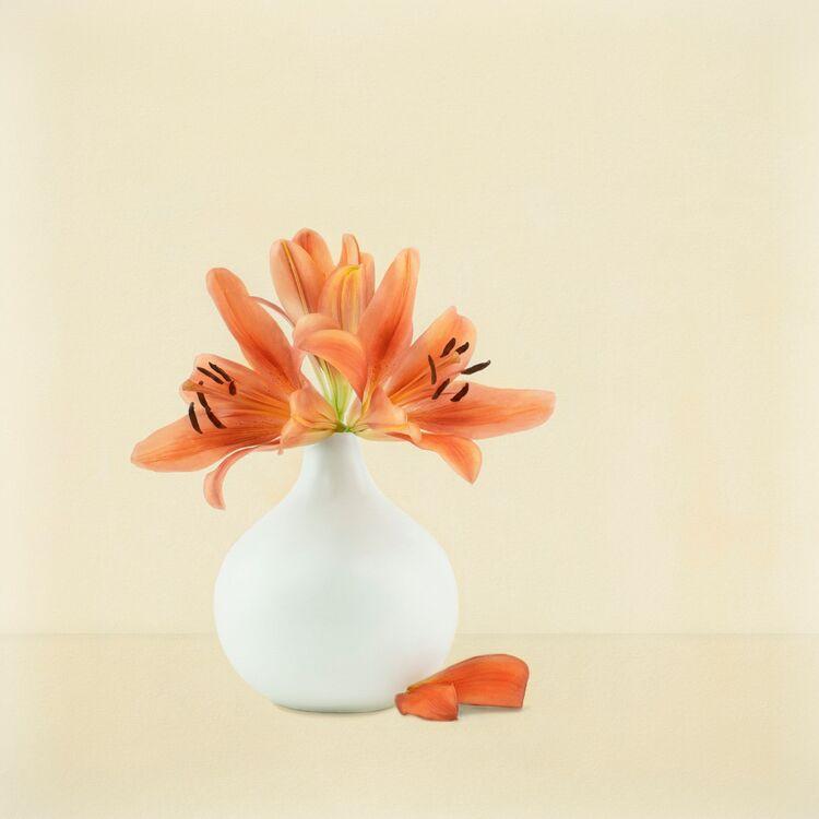 Orange Lilies in white Vase 1
