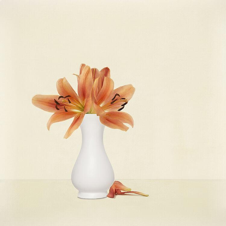 Orange Lillies in white Vase 2