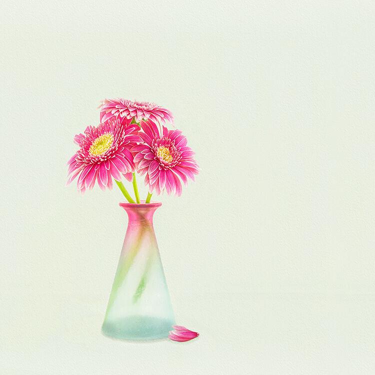 Pink Gerbera Posy