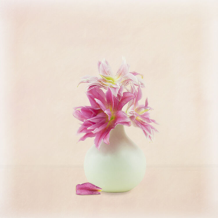 Pink Rose Lily in White Vase 2 - Copy