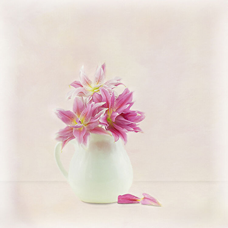 Pink Rose Lily in white Vase 1