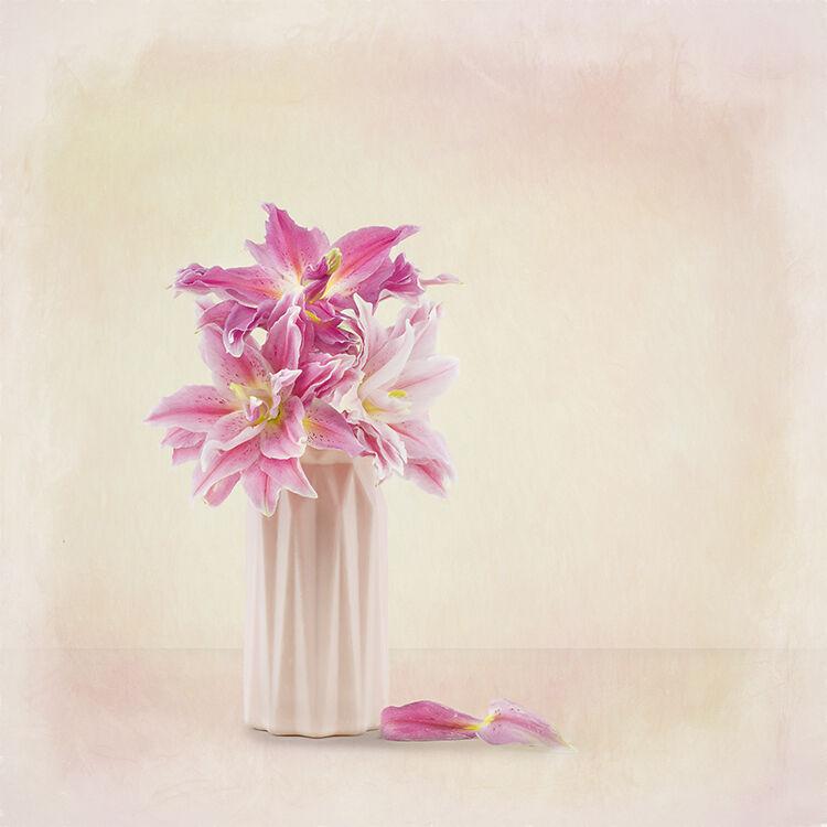 Pink rose Lily in Pink Vase
