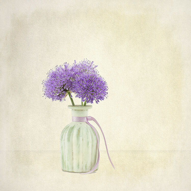 Purple Alium in Crean Vase