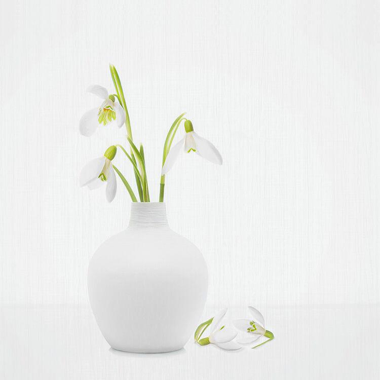 Snowdrops in White Vase 1