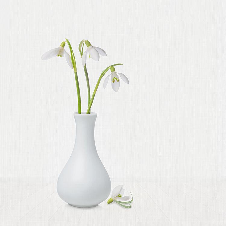 Snowdrops in White Vase 2