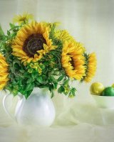 Sunflowers and Citrus