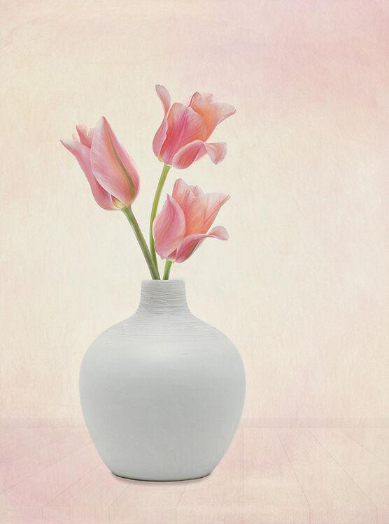 Three Pink Tulips White Round Vase