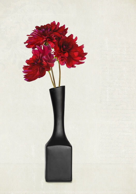 Three Red Dahlia Black Vase