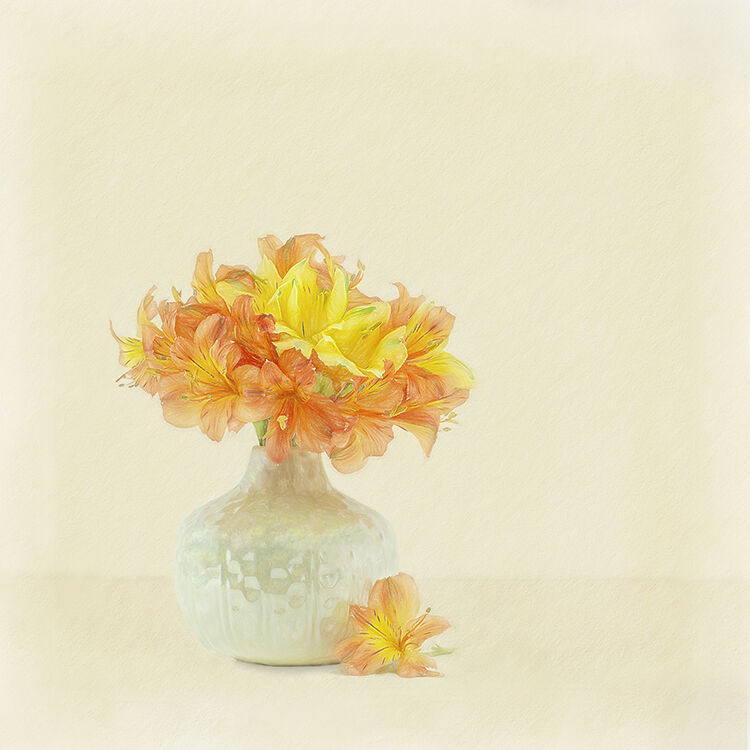 Yellow and Orange Astromeria in Cream Vase 1