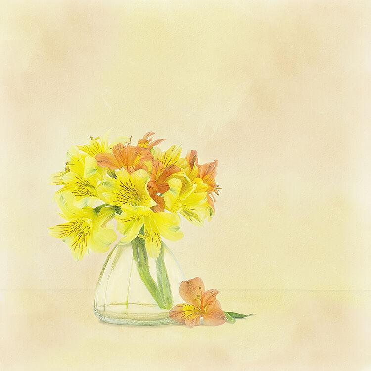 Yellow and Orange Astromeria in Glass Vase 1