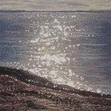 'Stokes Bay', by Beverley Daniels
