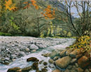 River in Senales Valley Oil on canvas 50cm x 40cm