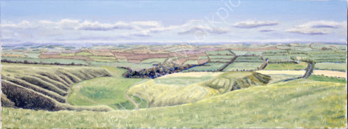 Vale of the White Horse Oil on canvas 80cm x 30cm