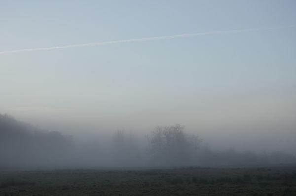 Bargaly mist #1