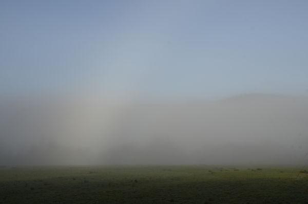 Bargaly mist #2